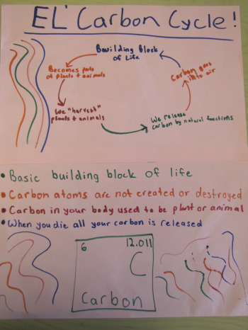 Students Show Off Their Carbon Cycle Knowledge - Climate ...