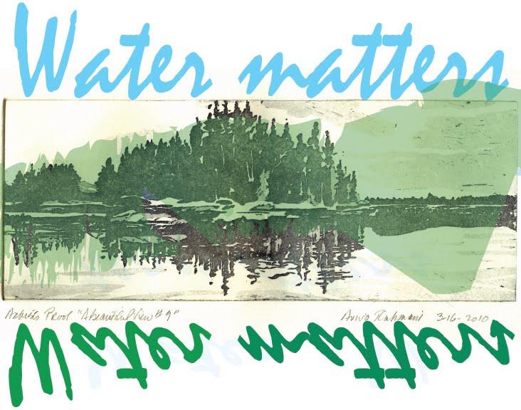 Aviva Rahmani, Water Matters: A Beautiful View #9, 2010