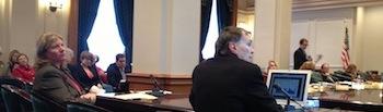 State Senate Hearing