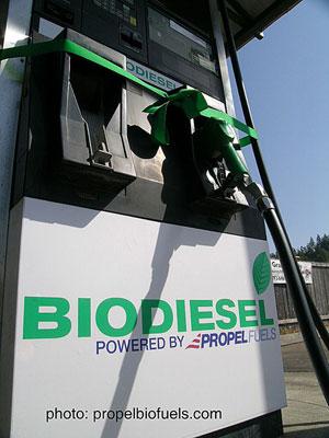 biodiesel-pump-john-barrie.jpg
