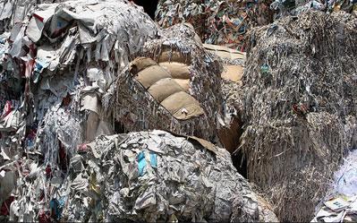 biomass-pile-leopoldo.jpg