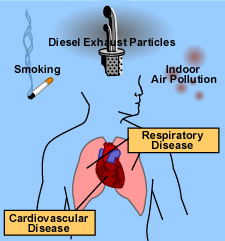 Figure:Health Effects caused by Air Pollution