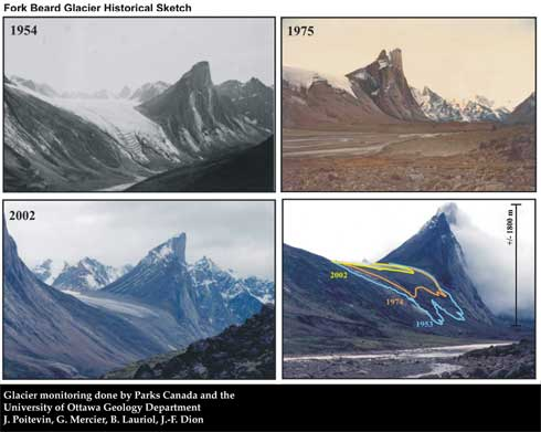 fork_beard_glacier.jpg