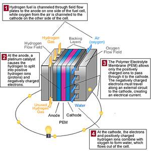 fuel-cell-diagram-us-fed-go.jpg